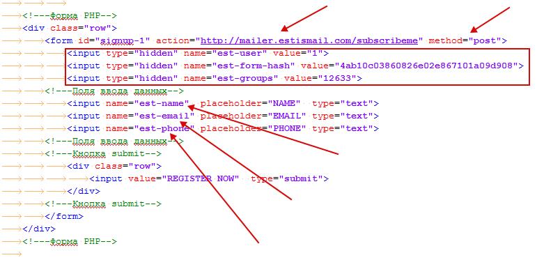 Разъяснение вставок кода в форму